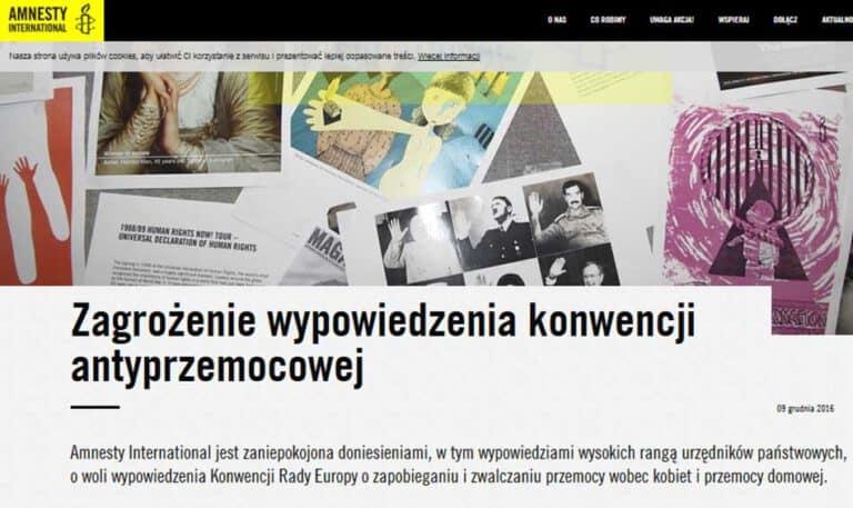 Histeria antyprzemocowa - komentarz do manipulacji Amnesty International Polska